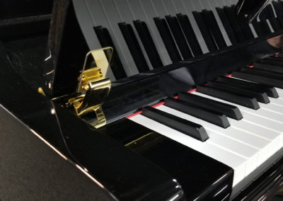 Close veiw of the Piano Fallboard