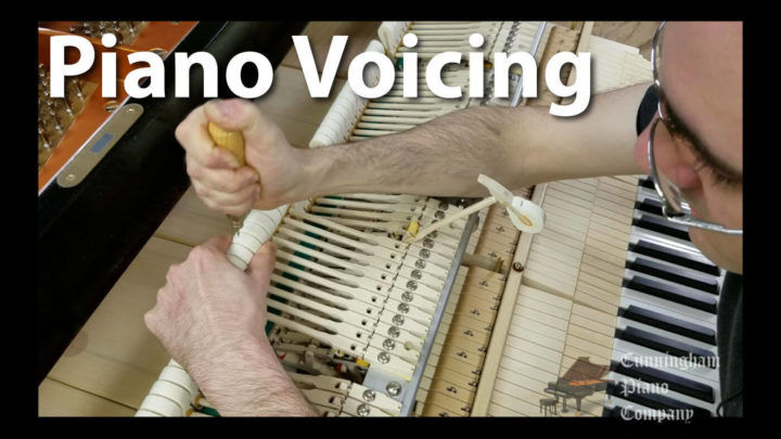 See how experts perform Piano tuning and voicing