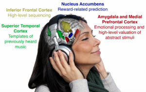Manage your Mind, Mood, Emotion & Stress with Music